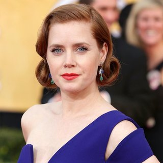 Amy Adams - The 20th Annual Screen Actors Guild Awards - Arrivals