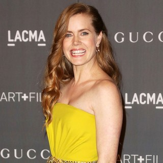 Amy Adams in LACMA 2012 Art + Film Gala - Arrivals