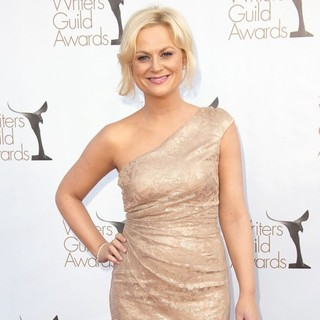 Amy Poehler in The 2012 Writers Guild Awards