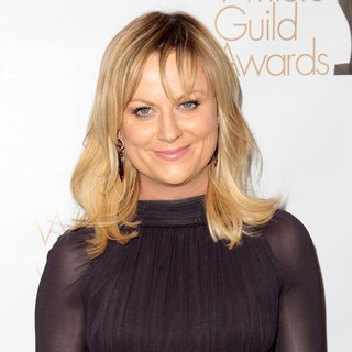 Amy Poehler in 2013 Writers Guild Awards - Arrivals