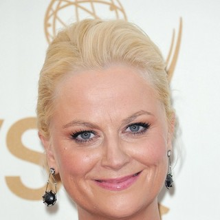 Amy Poehler in The 63rd Primetime Emmy Awards - Arrivals