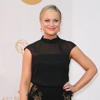 Amy Poehler in 65th Annual Primetime Emmy Awards - Arrivals