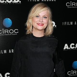 Amy Poehler in A.C.O.D. Los Angeles Premiere