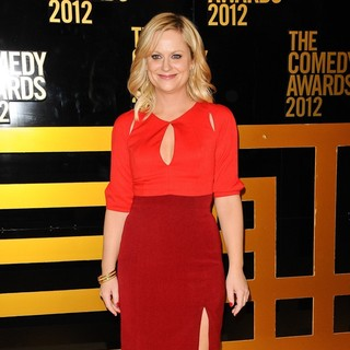 Amy Poehler in The Comedy Awards 2012 - Arrivals