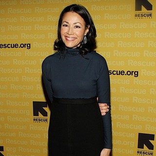 Ann Curry in The International Rescue Committee's Annual Freedom Award Benefit - Arrivals