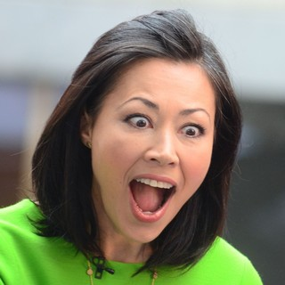 Ann Curry at Rockefeller Center for The Today Show's Concert Series