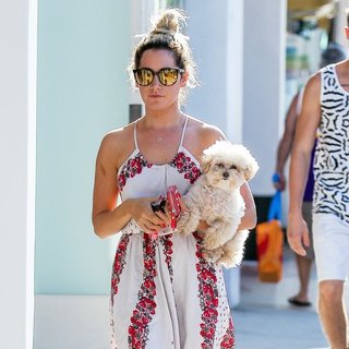 Ashley Tisdale Carries Her Dog Whilst Out in Studio City
