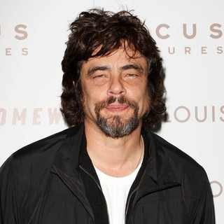 Benicio Del Toro in Premiere of Somewhere - Arrivals