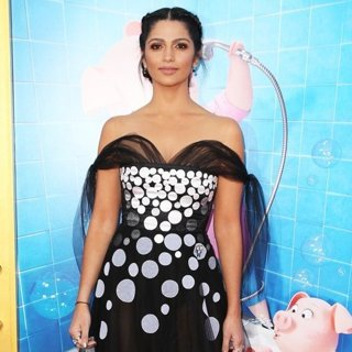 Camila Alves-Los Angeles Premiere of Sing - Arrivals