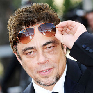 Benicio Del Toro in 2010 Cannes International Film Festival - Day 12 - Palme d'Or Closing Ceremony Red Carpet Arrivals