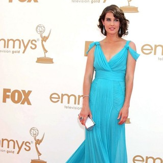 Cobie Smulders in The 63rd Primetime Emmy Awards - Arrivals
