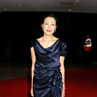 Ann Curry in 2010 White House Correspondents Association Dinner - Arrivals