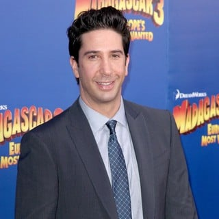 David Schwimmer in New York Premiere of Dreamworks Animation's Madagascar 3: Europe's Most Wanted
