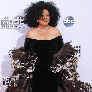Diana Ross in 2014 American Music Awards - Arrivals