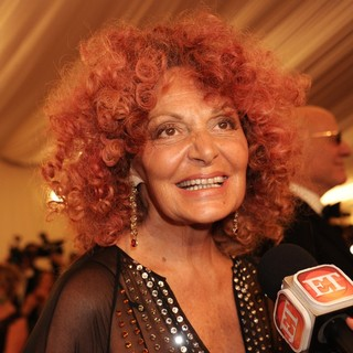 Diane Von Furstenberg in PUNK: Chaos to Couture Costume Institute Gala