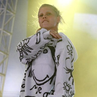 Yo-Landi Vi$$er, Die Antwoord in Big Day Out Festival