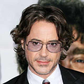 Robert Downey Jr. in Los Angeles Premiere of 'Due Date'