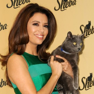 Eva Longoria Unveils The New Sheba: Feed Your Passion Campaign - eva-longoria-sheba-feed-your-passion-campaign-11