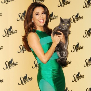 Eva Longoria Unveils The New Sheba: Feed Your Passion Campaign - eva-longoria-sheba-feed-your-passion-campaign-13