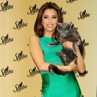 Eva Longoria Unveils The New Sheba: Feed Your Passion Campaign - eva-longoria-sheba-feed-your-passion-campaign-14