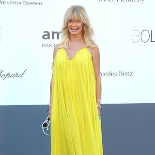 Goldie Hawn in 66th Cannes Film Festival - amfAR's 20th Annual Cinema Against AIDS - Arrivals