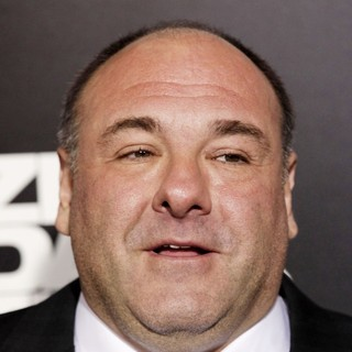 James Gandolfini in Los Angeles Premiere of Columbia Pictures' Zero Dark Thirty