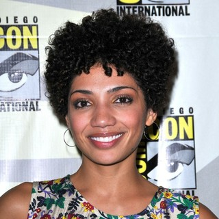 Jasika Nicole in Comic-Con 2010 - Day 3 - Fringe Press Conference