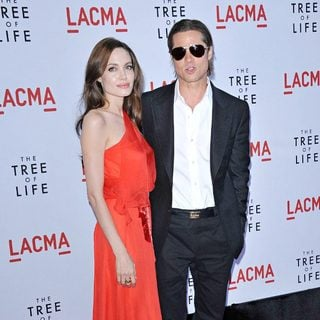 Brad Pitt - Los Angeles Premiere of The Tree of Life