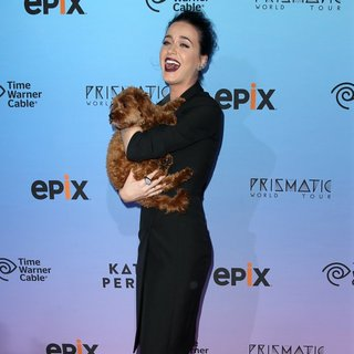 World Premiere of EPIX's Katy Perry: The Prismatic World Tour - Arrivals