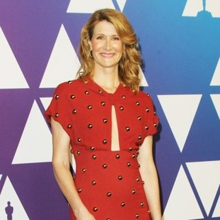 Laura Dern in 91st Oscars Nominees Luncheon