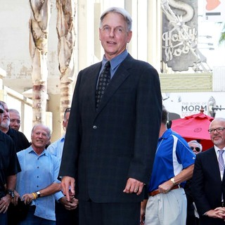 Mark Harmon in Mark Harmon Is Honored with A Hollywood Star on The Hollywood Walk of Fame