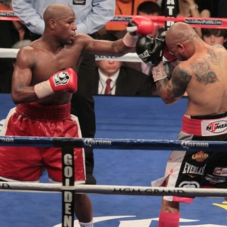 The Fight Floyd Mayweather, Jr. Defeated Miguel Cotto by Way of A Twelve Round Unanimous Decision - mayweather-jr-cotto-fight-floyd-mayweather-jr-vs-miguel-cotto-02