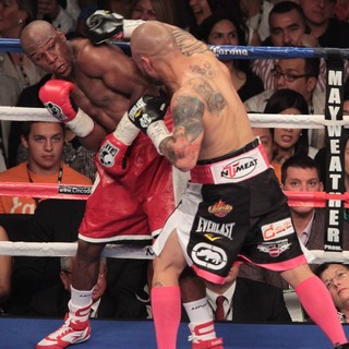 The Fight Floyd Mayweather, Jr. Defeated Miguel Cotto by Way of A Twelve Round Unanimous Decision - mayweather-jr-cotto-fight-floyd-mayweather-jr-vs-miguel-cotto-03