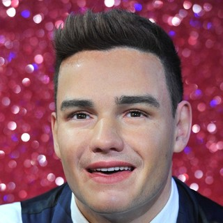 Liam Payne, One Direction in Wax Figures of One Direction Revealed