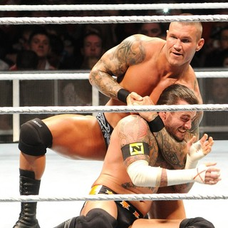 Randy Orton, CM Punk in WWE RAW Wrestling Superstars