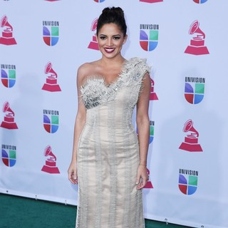 Pamela Silva Conde in 13th Annual Latin Grammy Awards - Arrivals