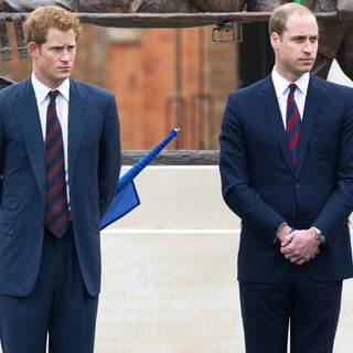 Prince Harry, Prince William in Prince William and Prince Harry Open The Help for Heroes Tidworth House Recovery Centre
