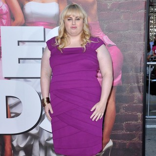 Rebel Wilson in The Premiere of Bridesmaids - Arrivals