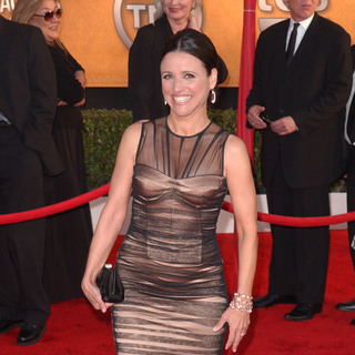 Julia Louis-Dreyfus in 16th Annual Screen Actors Guild Awards - Arrivals