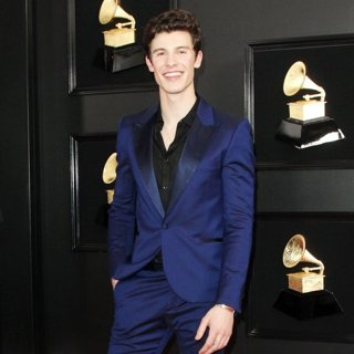 Shawn Mendes in 61st Annual Grammy Awards - Arrivals