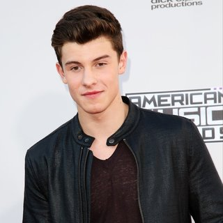 Shawn Mendes - American Music Awards 2015 - Arrivals