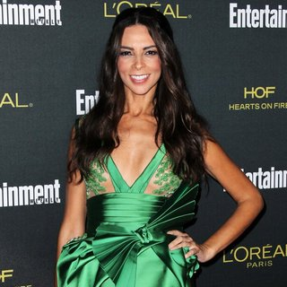 Terri Seymour in 2014 Entertainment Weekly Pre-Emmy Party - Arrivals