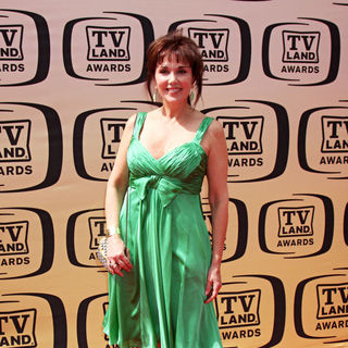 Stepfanie Kramer in The TV Land Awards 2010
