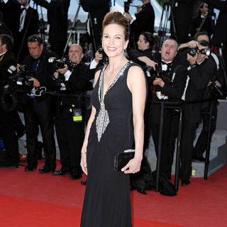 Diane Lane in 2010 Cannes International Film Festival - Day 3 - 'Wall Street 2: Money Never Sleeps' Premiere