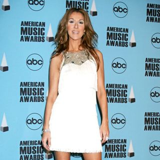 Celine Dion in 2007 American Music Awards - Pressroom