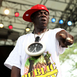 Flavor Flav in C.P.F. Presents Summer Stage at Rumsey Play Field with Blitz The Ambassador and Public Enemy