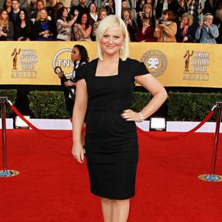 Amy Poehler in The 17th Annual Screen Actors Guild Awards (SAG Awards 2011) - Arrivals