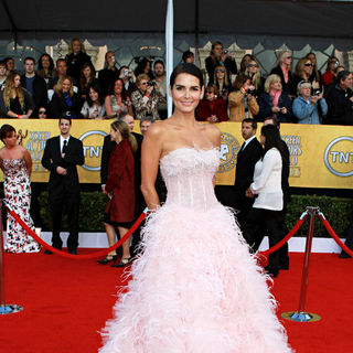 Angie Harmon in The 17th Annual Screen Actors Guild Awards (SAG Awards 2011) - Arrivals - wenn3187349