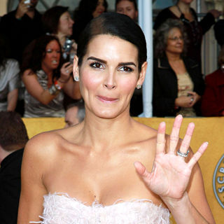 Angie Harmon in The 17th Annual Screen Actors Guild Awards (SAG Awards 2011) - Arrivals - wenn3188173