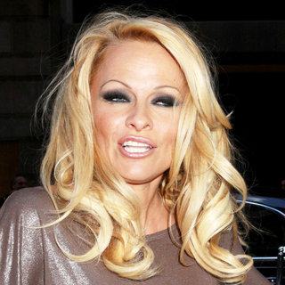 Pamela Anderson in PETA Honorary Pamela Anderson Promotes A New Bill to Replace New York City's Horse Drawn Carriages